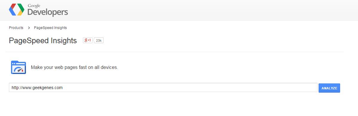 google pagespeed geekgenes